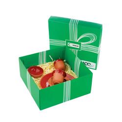 Yeşilay - Toprak Servis Tabaklı Fincan Seti - Kırmızı